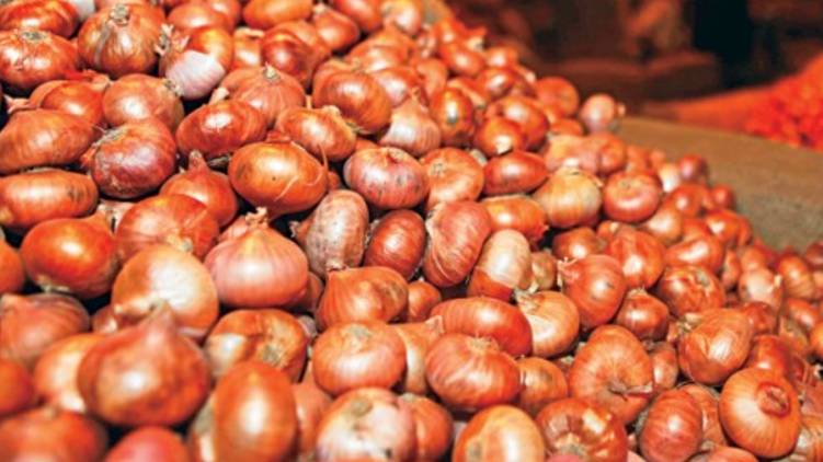 onion prices hike ; kerala Government intervention
