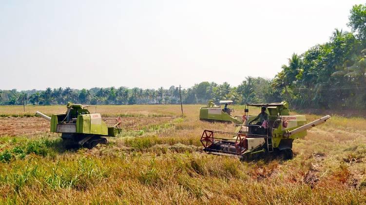 farmer welfare board cabinet decision