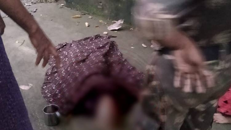 wild elephant killed elderly woman in Attapadi