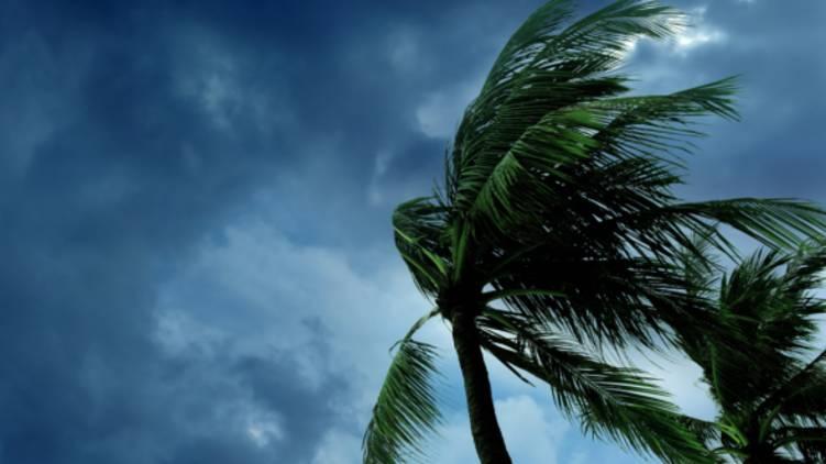 nivar cyclone enters land soon