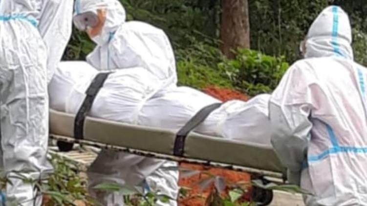 covid 19, coronavirus, covid deaths