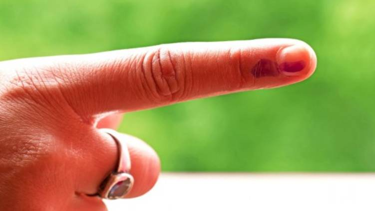 Local elections: 88,26,620 voters will go to the polls tomorrow