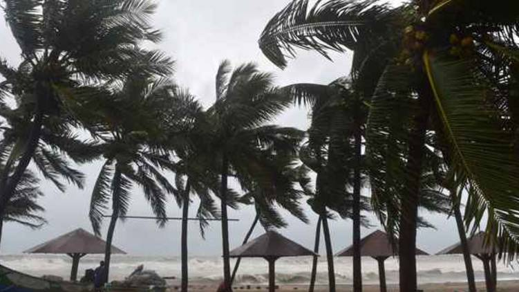 burevi cyclone 5 districts declared holiday