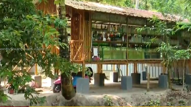 woman transforms goat shed to art gallery