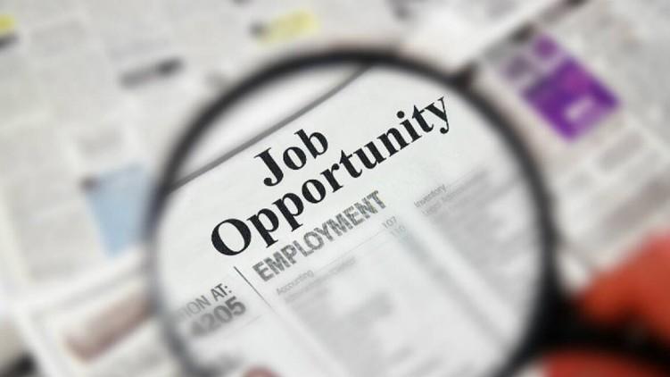 job opportunities digital platforms
