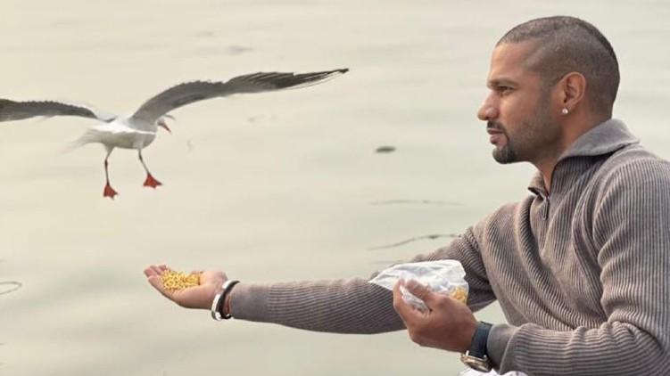 case Dhawan feeding birds