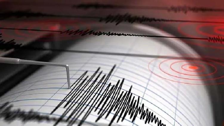 earthquake Tsunami warning Zealand