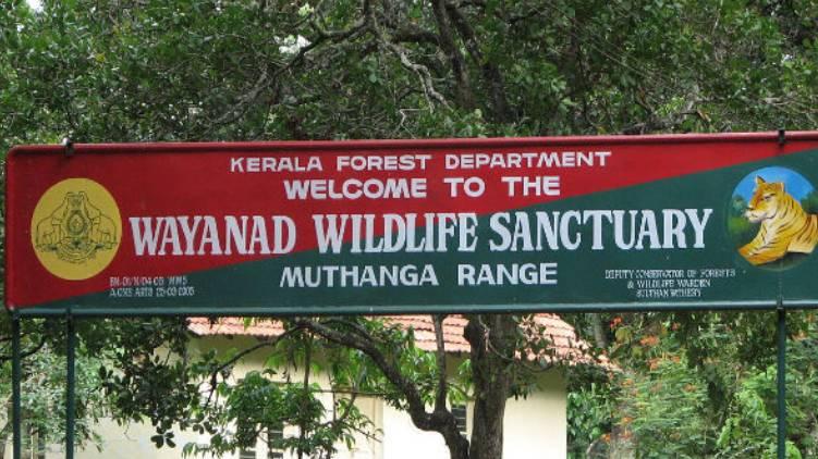 wayanad wild life sanctuary