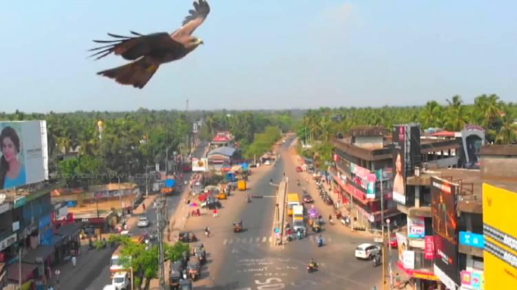 ponnani constituency history tharamandalam