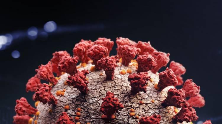 uk variant coronavirus confirmed again in kerala