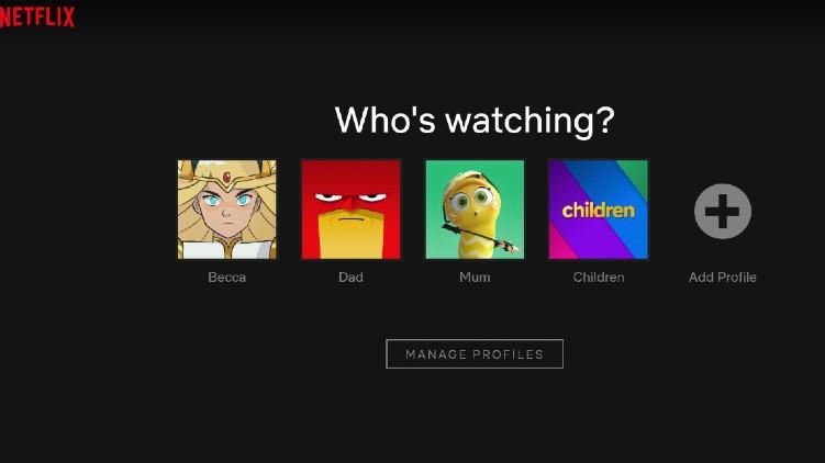 Netflix Cracking Shared Passwords