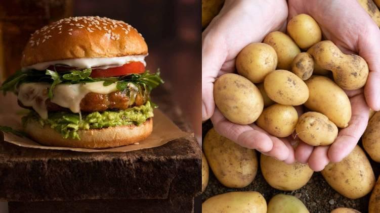 potato free with burger