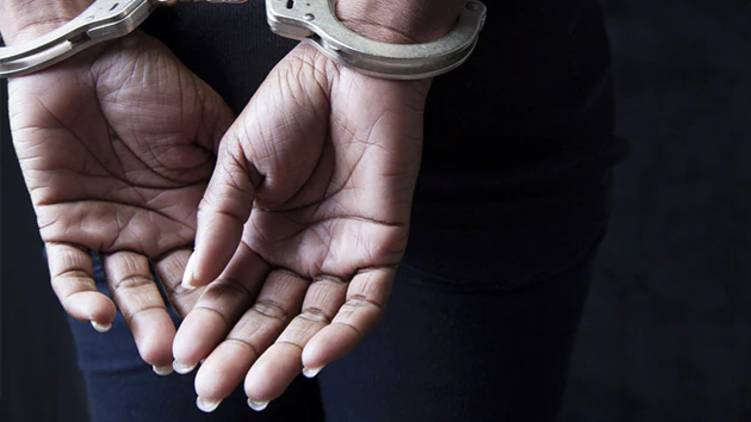 woman arrested for assaulting pathanamthitta elderly couple