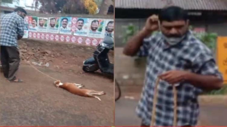 cruelty pet dog arrested
