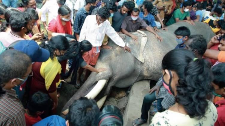 probe team may begin evidence collection on ambalappuzha vijayakrishnan death
