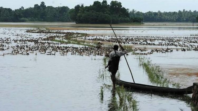 Floods in Kuttanad