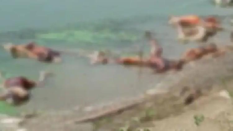Floating Corpses Count bihar