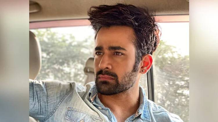 Naagin Actor Pearl Puri Arrested For Allegedly Raping Minor