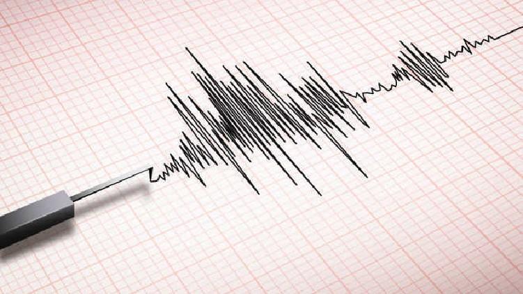 Earthquake Hits Ladakh's Leh