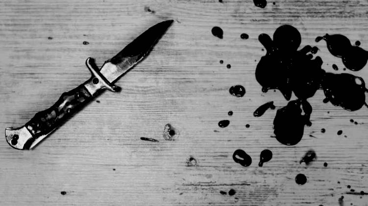 delhi old woman stabbed 20 times