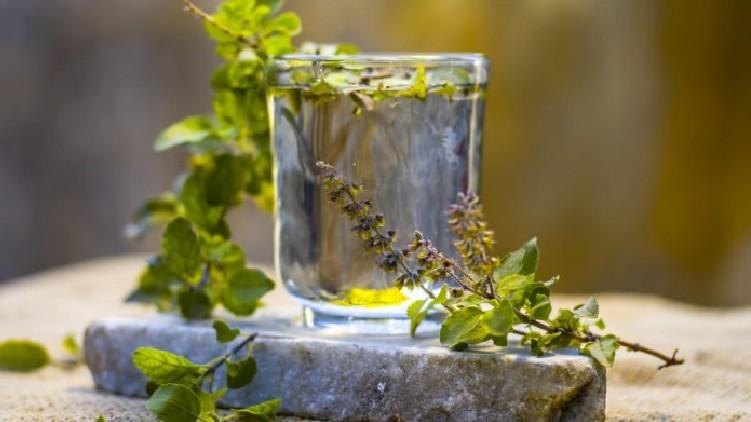 benefits of basil water