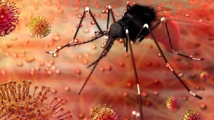 center sends special team to kerala to study zika virus