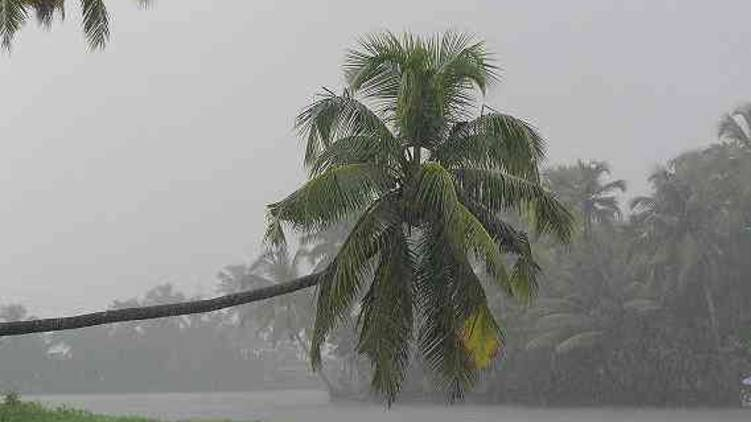 kerala gets poor monsoon shower