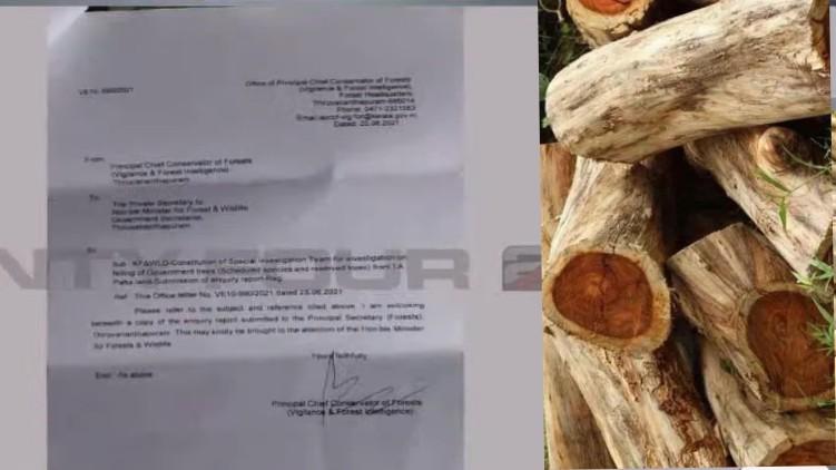 wood robbery revenue report