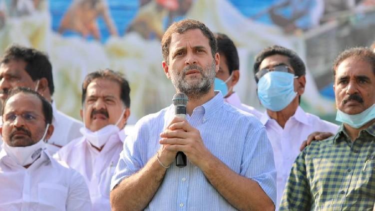 rahul gandhi wayanad collector