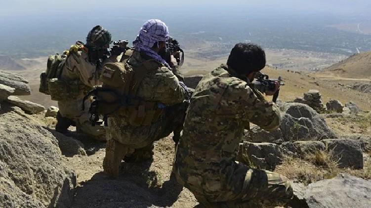 700 taliban killed afghanistan