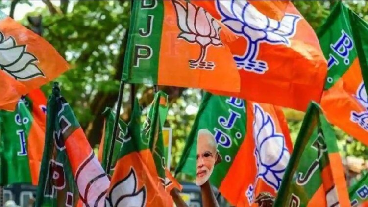 BJP Kerala organizational level changes