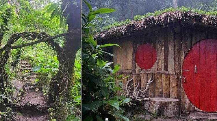 Hobbit house in Nagaland