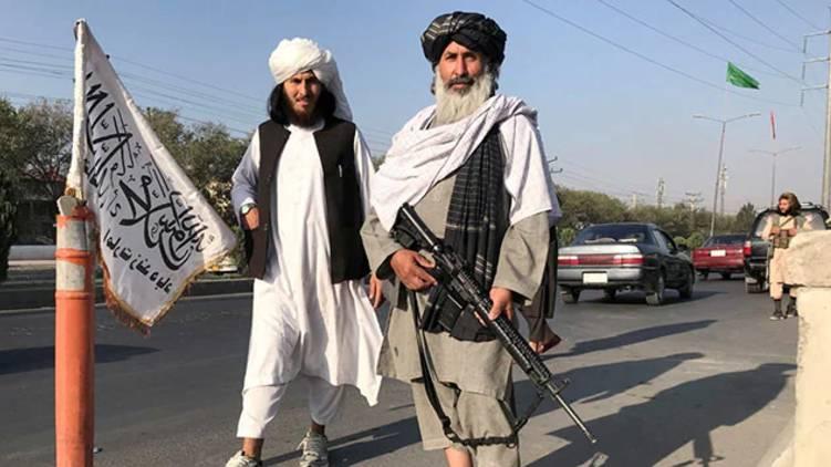 alqaeda seeks taliban support