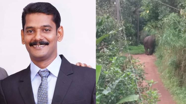 elephant kills man in kannur